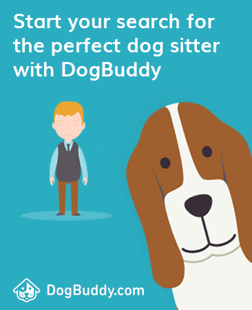 find your perfect dog sitter with DogBuddy